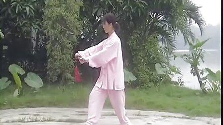 程派游身八卦掌系列 八卦剑教学