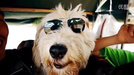 [花絮]狗狗变身黑超特警•遇见你