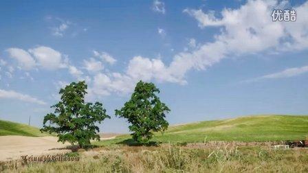 美国华盛顿州 帕劳斯 风景(二)Colfax