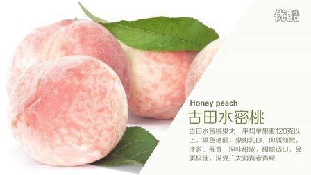 水蜜桃果酱 06