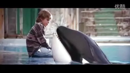 1993年经典电影『Free Willy/人鱼的童话/威鲸闯天关』预告片