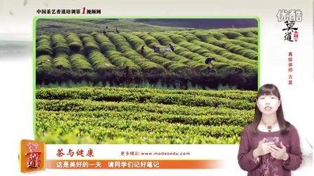 红茶 绿茶  茶与健康 普洱茶 黑茶 茶艺表演 茶艺培训 香道 白茶 茶楼管理