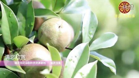 广东璠龙航拍合集