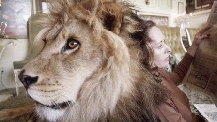 美女与野兽糗事大盘点 43