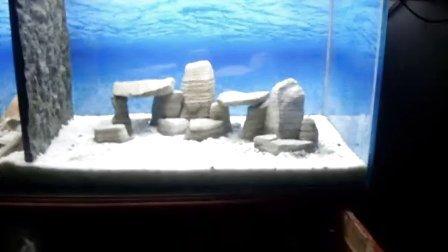 三湖慈鲷鱼缸造景石头千层石青龙石木化石虎皮石24集水族箱造景教程