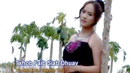 苗族歌曲2015年 txhob faib siab dhuav