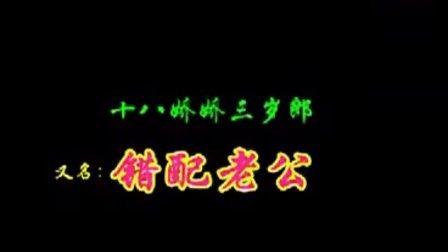 赣南采茶戏  十八娇娇三岁郎(错配老公) 3