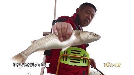 《游钓中国》第32集 寻梭盘锦