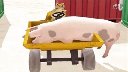大海解说 神奇青蛙 骑着母猪去逛街 第19期