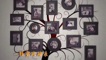 南京丹宏职业化素养培训视频