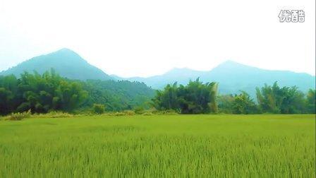 河源东源县叶潭镇半埔村视频(田园风光)
