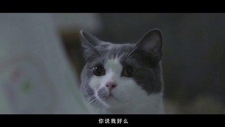 《喵星人抢不到》第二季03集:喵的第十次恋爱(暖男版)