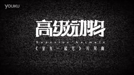 中国独立音乐人最大规模集结!全新演绎窦唯《高级动物》