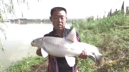 《游钓中国》第11集 踏河寻青(下)