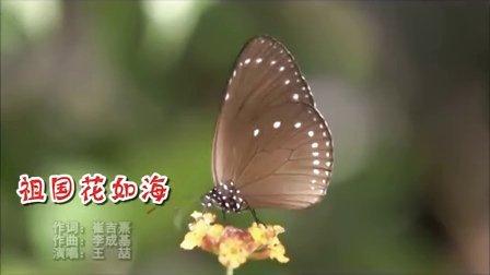 祖国花如海