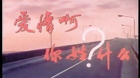 国产剧情影片《爱情啊你姓什么》高清