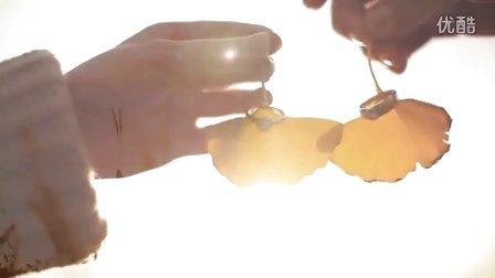 Premarital micro-film