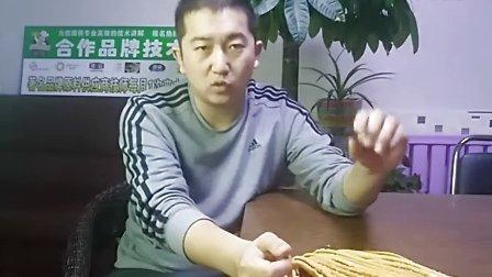 馓子—锦州蓝麦烘焙裱花技术培训学校