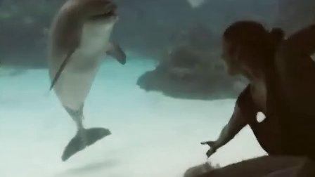 搞笑视频,人和海豚肢体和目光的交流,好温馨。