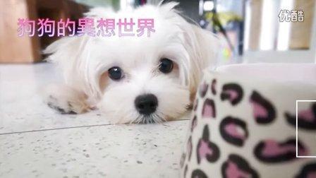 我家的狗有幻想症!?可愛的狗狗異想世界(720p)