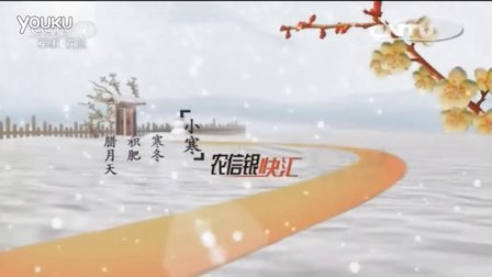 cctv7农业节目ID-小寒篇、田野篇