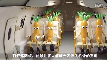 一分钟科普-飞机起飞下降时为什么要求打开遮阳板