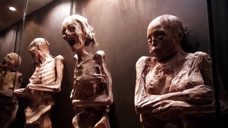 冒险雷探长 第七十二集 偷尸体的女人——墨西哥