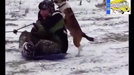搞笑视频,冬天滑雪稀奇古怪搞笑视频合集
