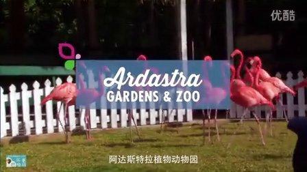 阿达斯特拉植物动物园 - 乐享巴哈马 | Bahamas Joy