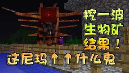 【奥尼玛】我的世界(Minecraft)第八期矿石菌种超变态mod
