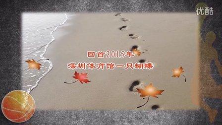 2015深圳体育馆一只蝴蝶