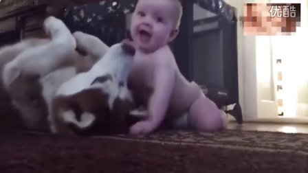 搞笑视频,一岁小宝宝和狗狗拥抱亲昵,好温馨