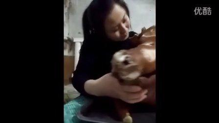 一顿吃一个猪头的美女,既然吃不胖
