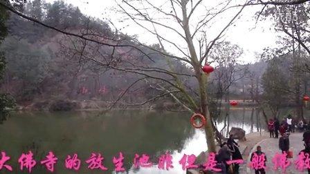 """猴年正月初四大佛寺景点之""""放生池""""实况游记"""