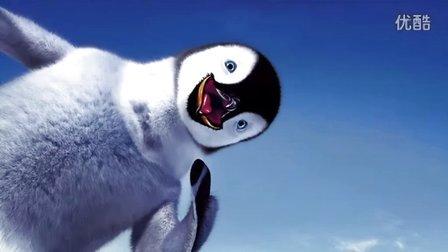 有趣可爱的企鹅视频合集