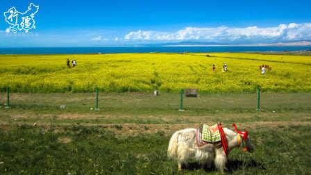 《行疆》第11集:环青海湖丨单人单车骑行中国