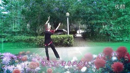 爱在天地间【正面】形体舞 广场舞 民族舞 曾惠林舞蹈系列