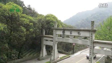 狮梅 2017明前西湖龙井新茶上市倒计时宣传视频