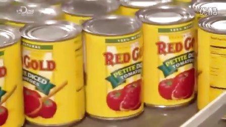 番茄泥罐头生产过程