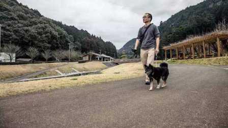 他宁可每天陪着狗散步一小时 也不愿去做白领 61