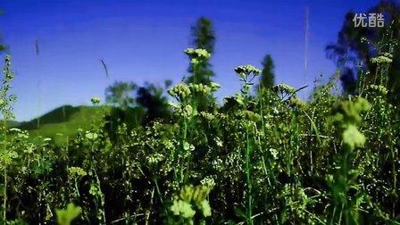 伊犁之行 那拉提草原 世界四大草原之一