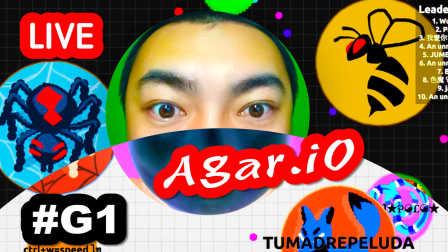 【Agar.io】直播观众都是高手啊!  #G1