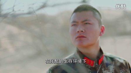大漠消防兵火样青春纪实片《梭梭》