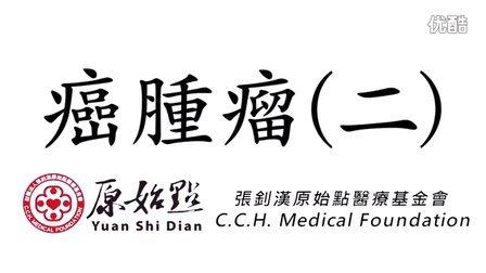 2015原始點讲座 (马来西亚)─15癌肿瘤2_(超清)1280×720