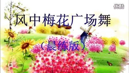 风中梅花广场舞(晨练版) 青春舞曲 凤凰香香编舞  风中梅花学习制作