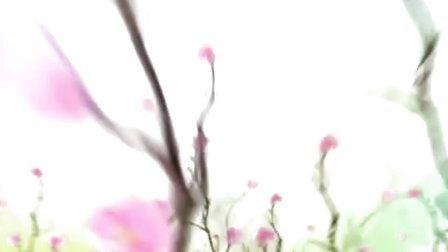 苗族歌曲杨华玉1