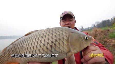 《游钓中国》第66集 巧守万佛湖