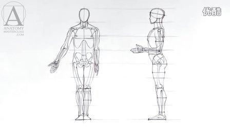 人体结构手绘,素描绘画教程