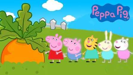 粉红猪小妹 拔萝卜 粉红猪 佩琪 乔治