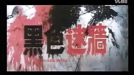 黄家驹-电影《黑色迷墙》驸彦影视在线